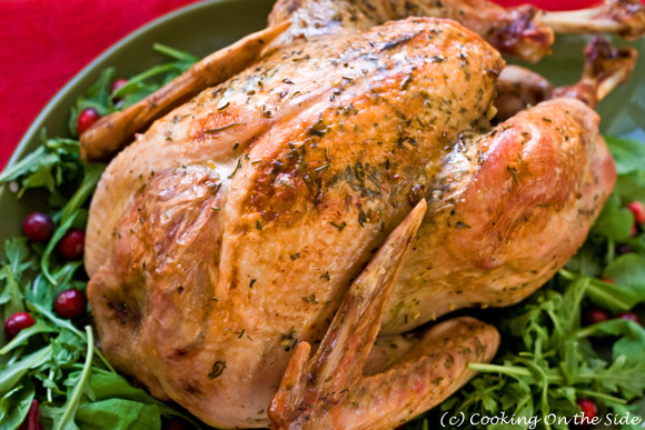 Post image for Thanksgiving Turkey