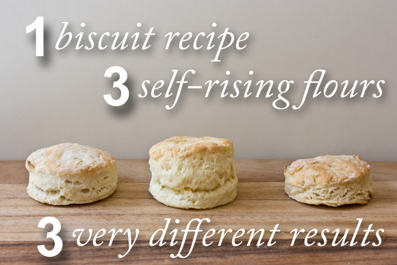 Post image for The Results Are In: Which Flour Made the Best Biscuits?