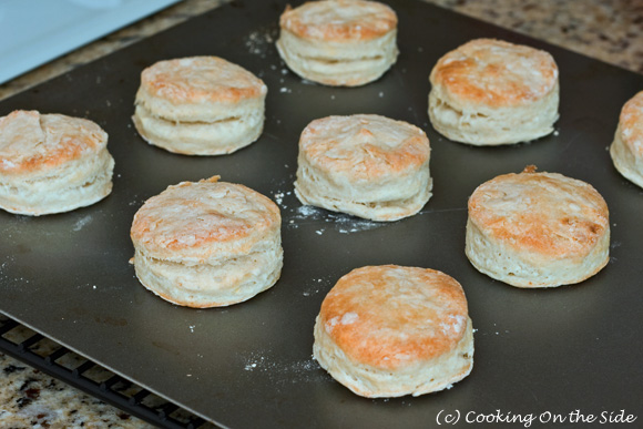 I baked all 3 batches of biscuits