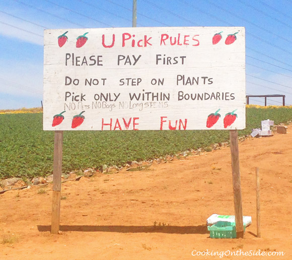 The rules of strawberry-picking