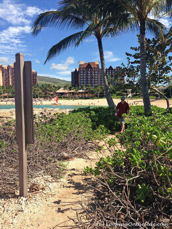 Another gorgeous day at Aulani