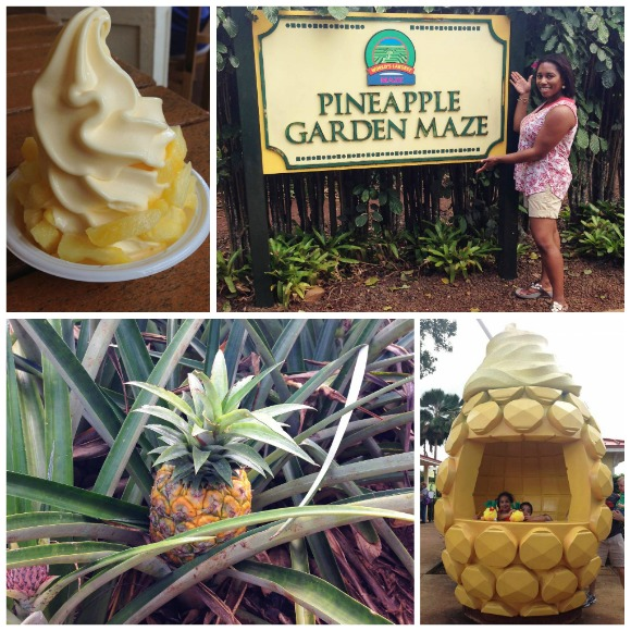 Pineapple fun at the Dole Plantation